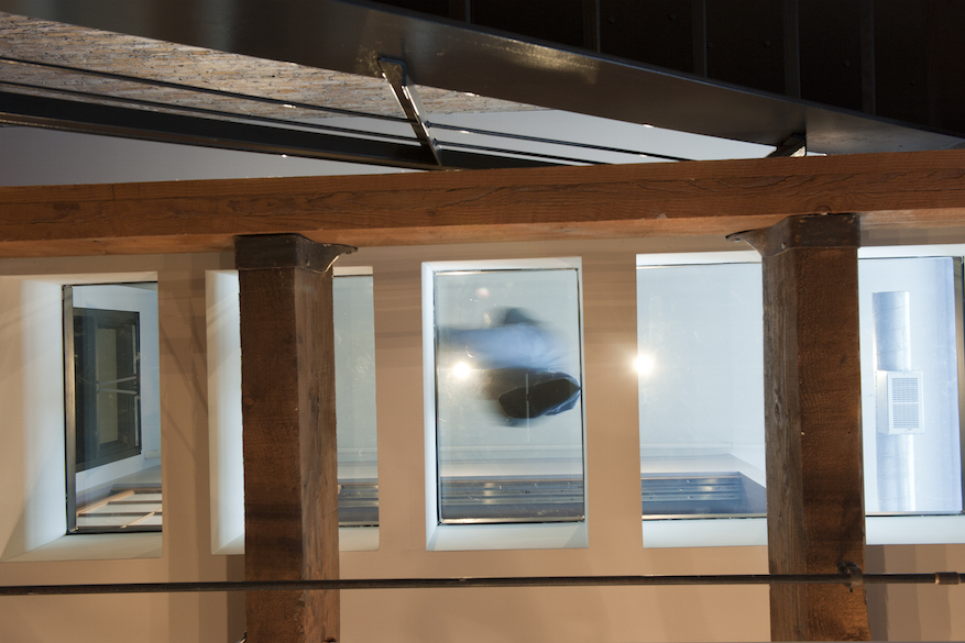 Image from below of a glass walkway, meant to encourage sunlight to travel through a loft