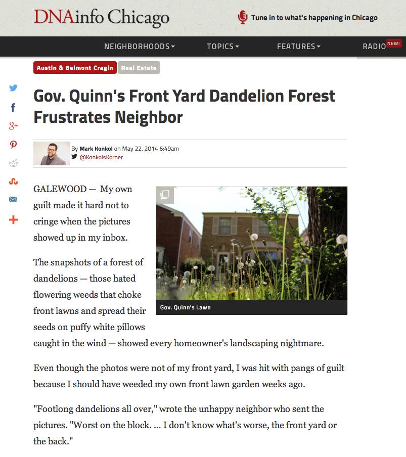 dnainfo_quinn lawn