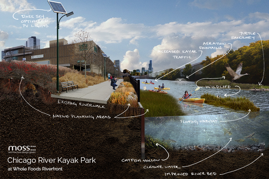 river kayak park proposal