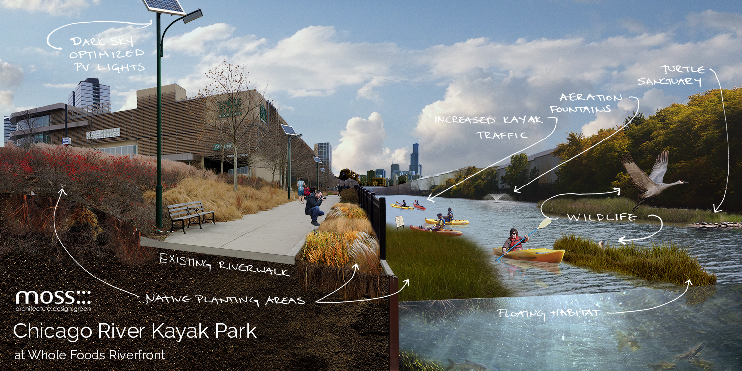 Chicago River Kayak Park Proposal
