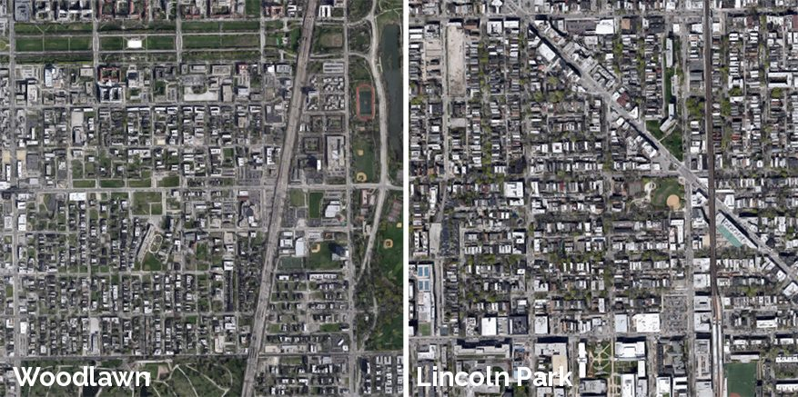 woodlawn vs lincoln park street trees